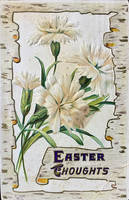 Easter Thoughts - Virtuous Carnations