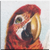 Vintage Greenwing Macaw Icon - right by Yesterdays-Paper