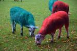 Coloured sheep at Web Summit 2015