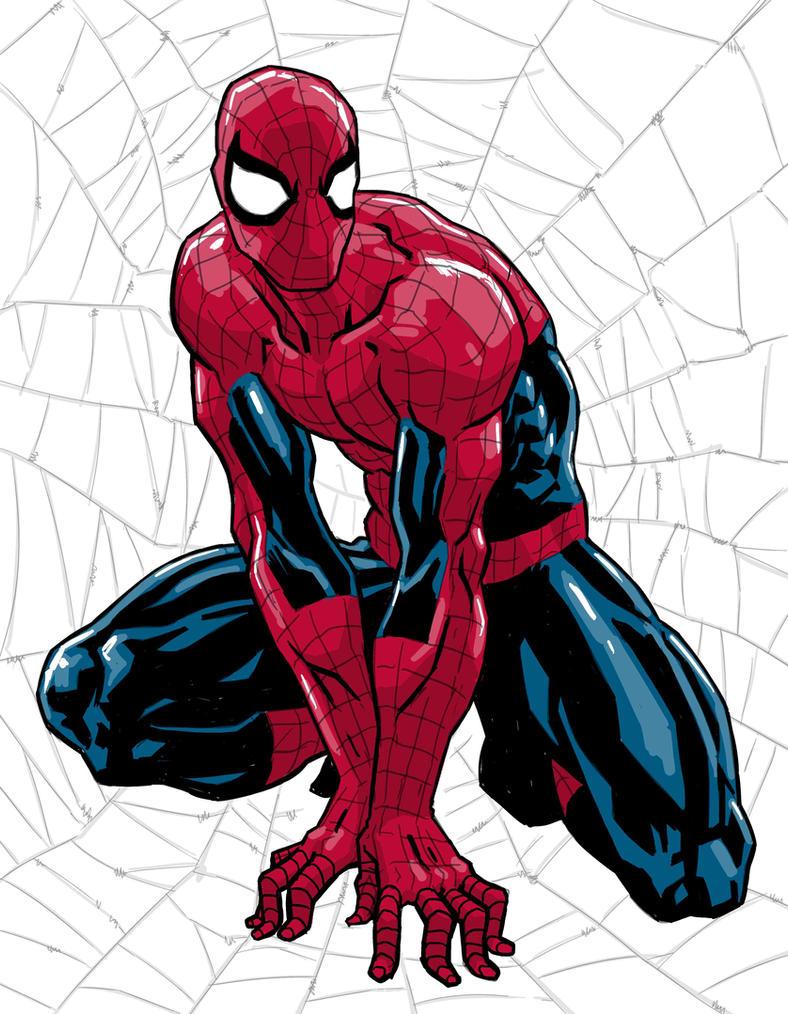 Spiderman by Fuacka