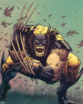 Wolverinenoseless2
