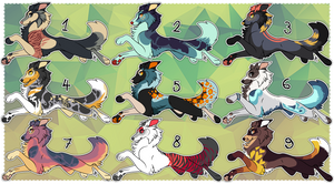Aussie/collie adoptables [CLOSED] by Hohtis