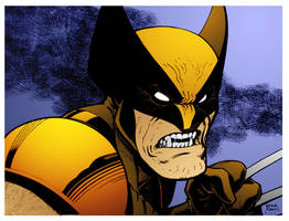 Wolverine by Arthur Adams by DrDoom1081