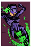 Catwoman by Darwyne Cooke by DrDoom1081