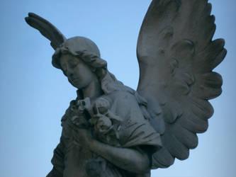 Angel Flower by territoires