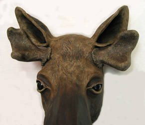 Moose Mask 'Boris'