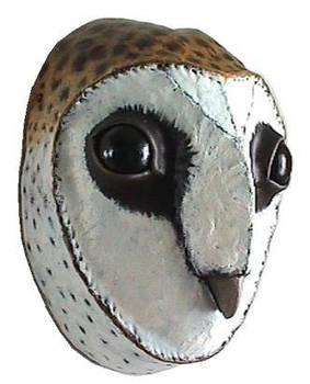 Echo Owl