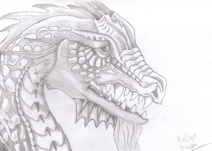 Viking Dragon Head Drawing
