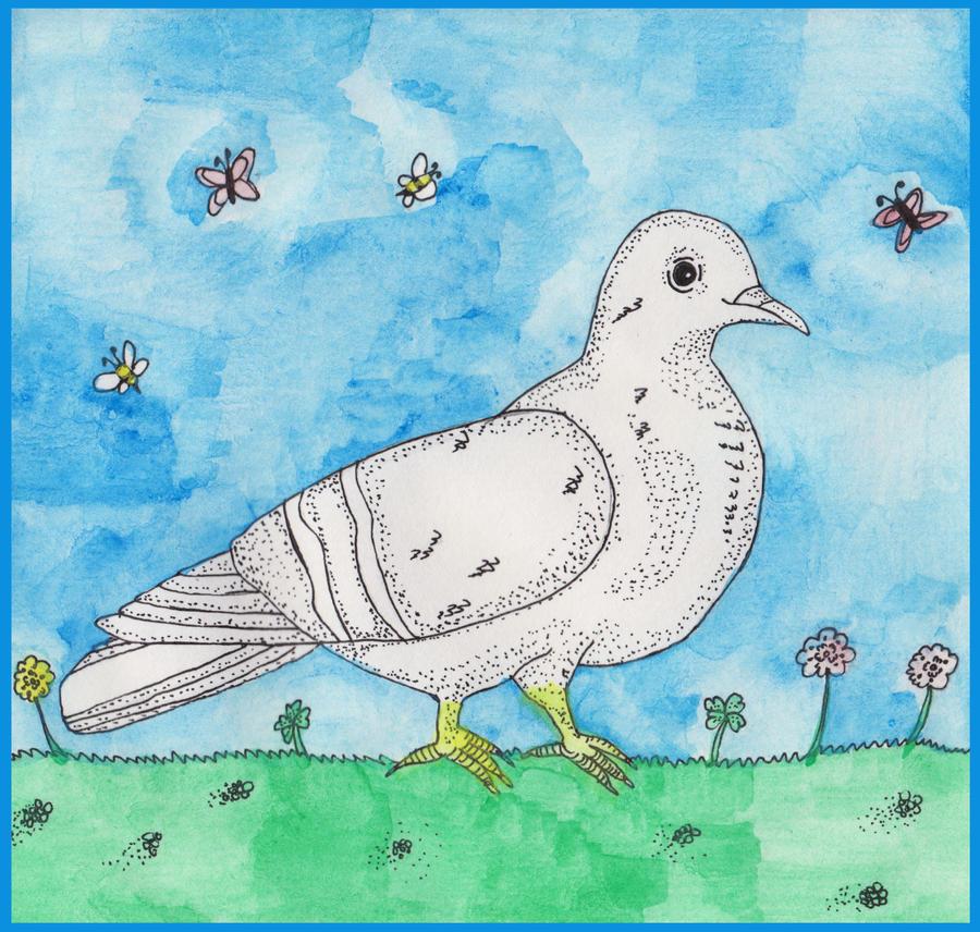 Pigeon by nikolabjovanovic