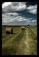 Hay Stacks by BrightRedFox by Nature-Club