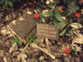 The Land of Heart's Desire by Nature-Club