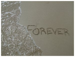 Forever? by SnapThat by Nature-Club