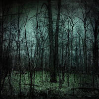 Cyan Forest by perception-obsc by Nature-Club