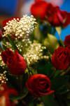 Roses 2 by Sharliz