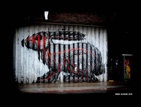 Rabbit Street Art