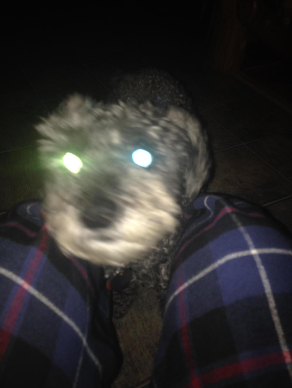 Glowy eyes by Shadowkey392