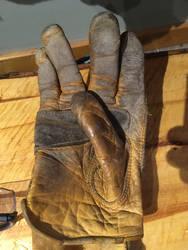 Glove Long and Prosper