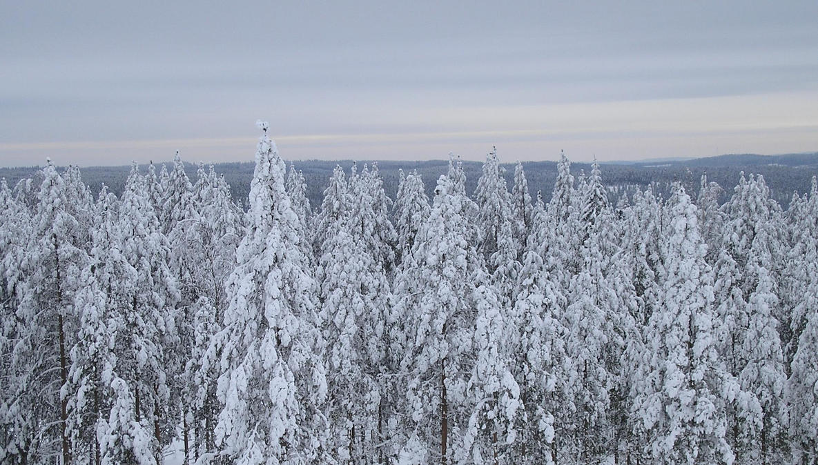 Winter Finland by Lumituisku