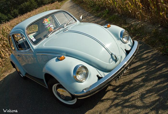 [Image: Volkswagen___Coccinelle_3_by_WisHima.jpg]