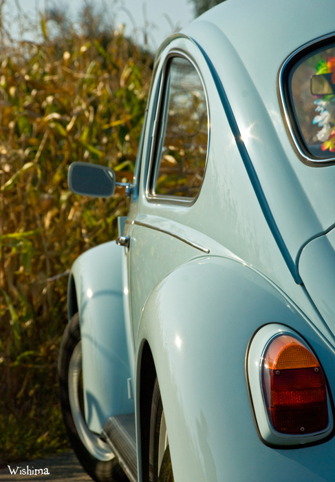 [Image: Volkswagen___Coccinelle_2_by_WisHima.jpg]