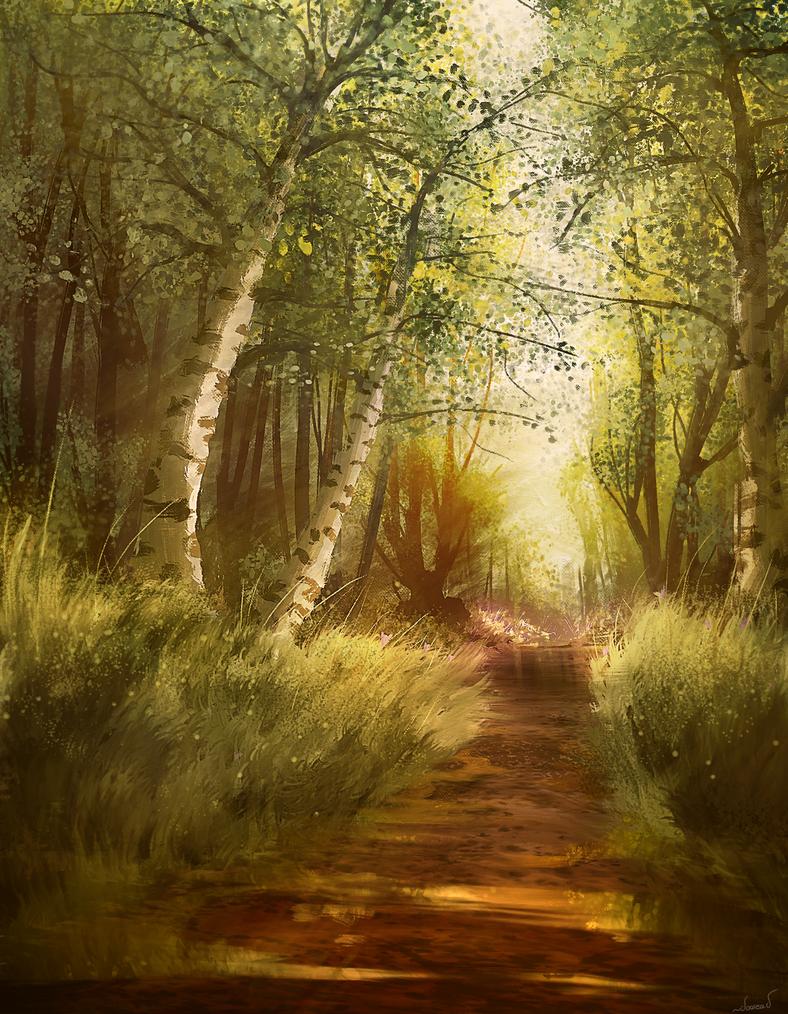 Forest by doosead