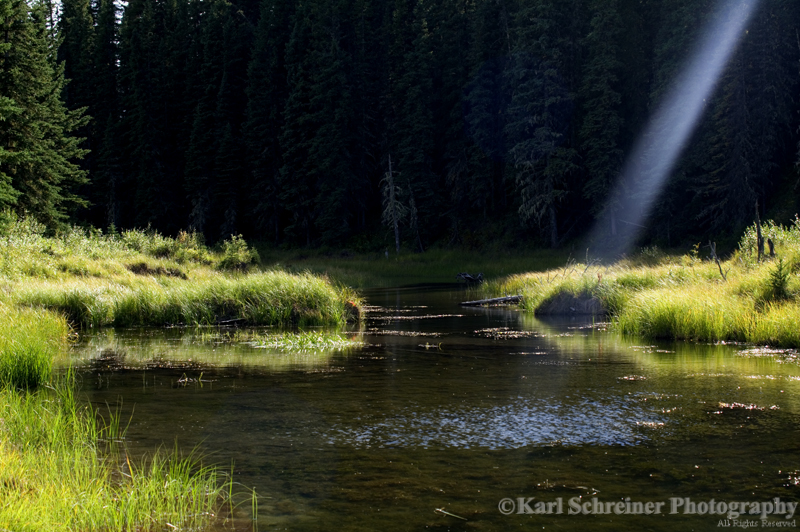 And God Says... Fish Here by KSPhotographic