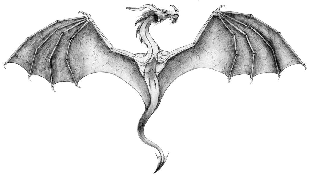 flying dragon drawings in color 37367 loadtve