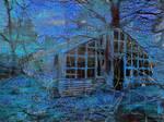 Forgotten Greenhouse by Stuckindoors