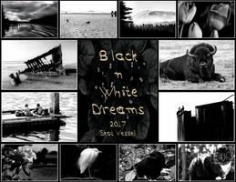 2017 - Black-n-White Dreams by caddman