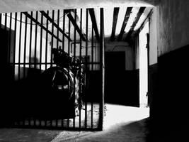 Black-n-White Dream 84 by caddman