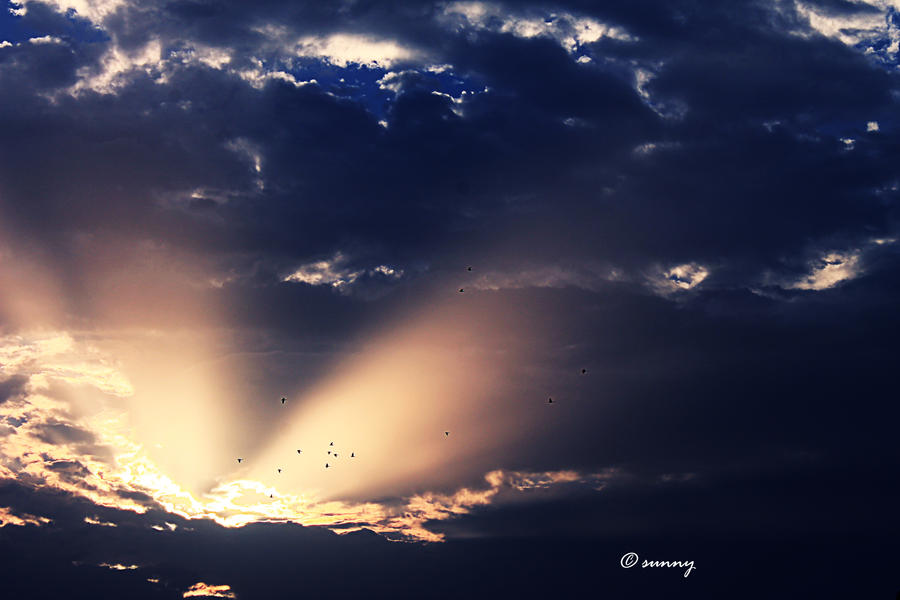 Sky8 by sunnybarjatya