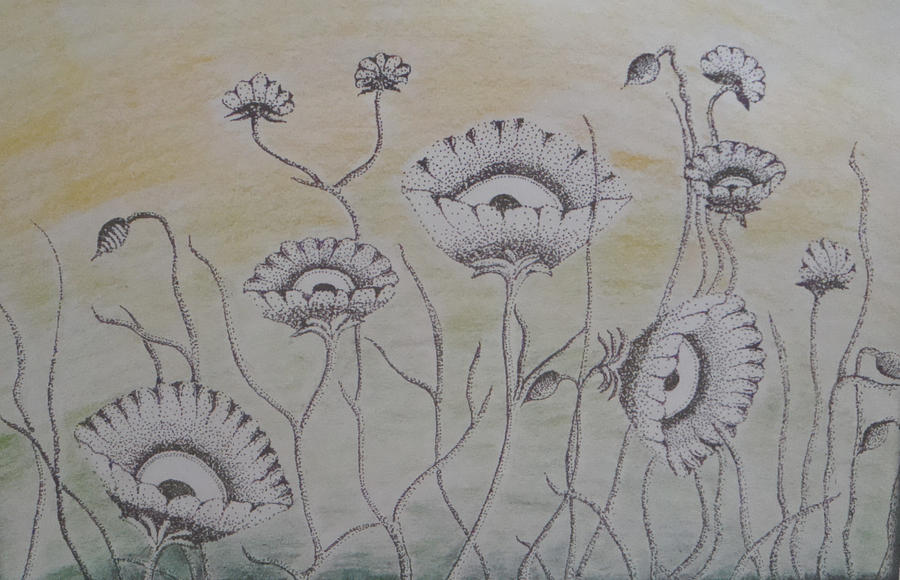 Flowers by hiaamir