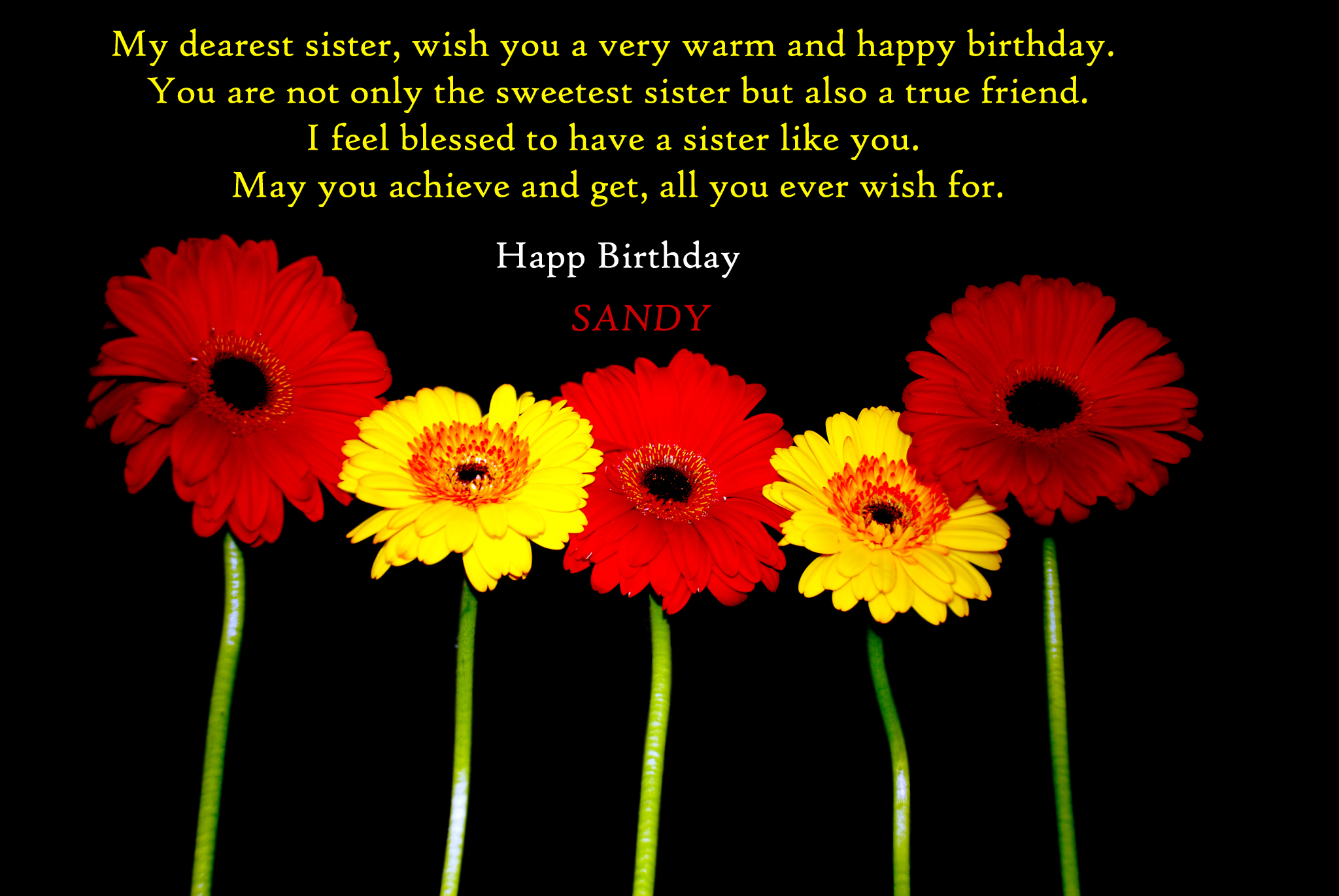 Happy Birthday Sandy By Hiaamir On Deviantart