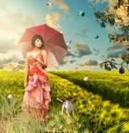 Summer - Spring