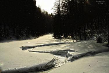 Winter day by yangdy