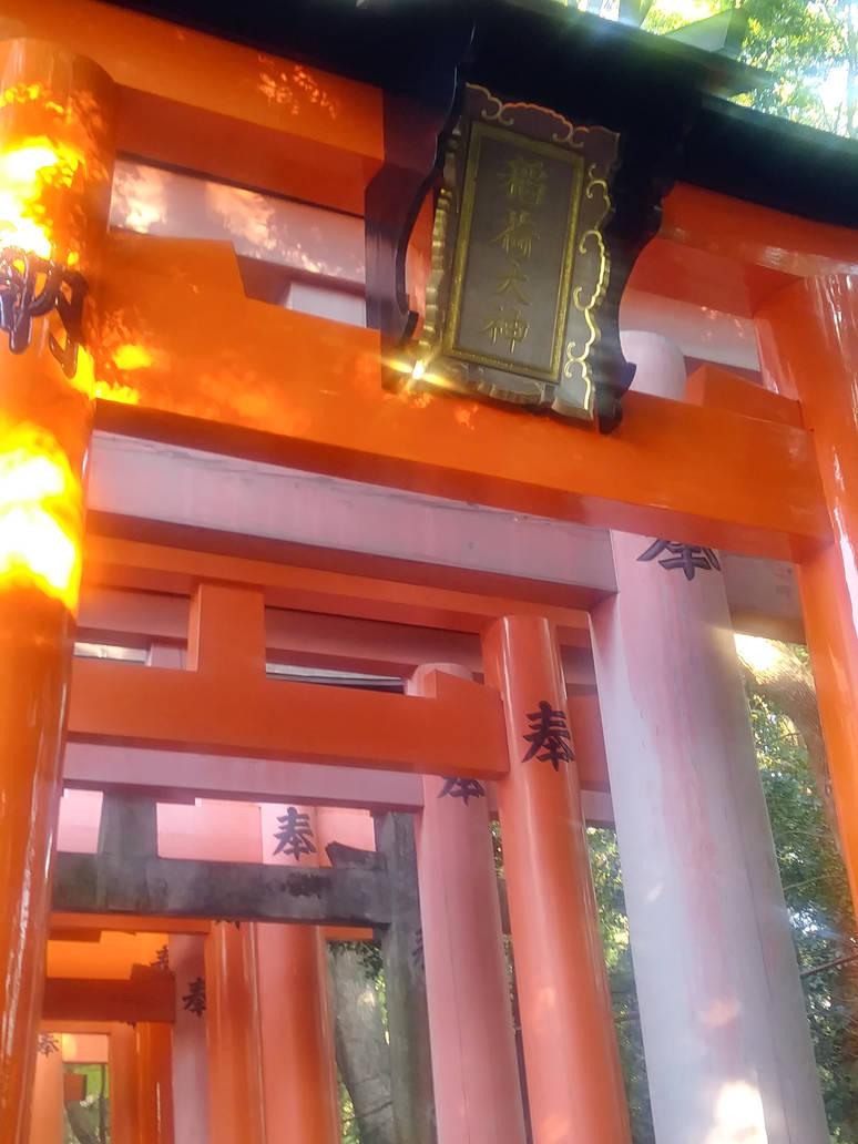Fushimi Inari Taisha by Amber2002161