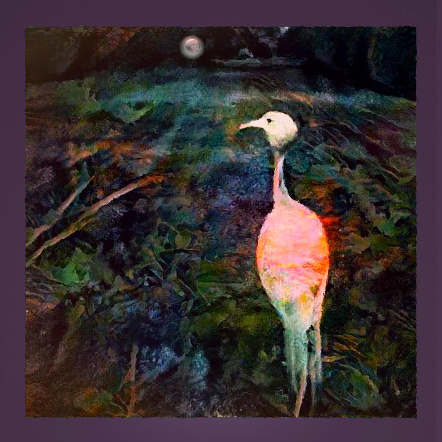 Warren's Midnight Garden by MikeHenry