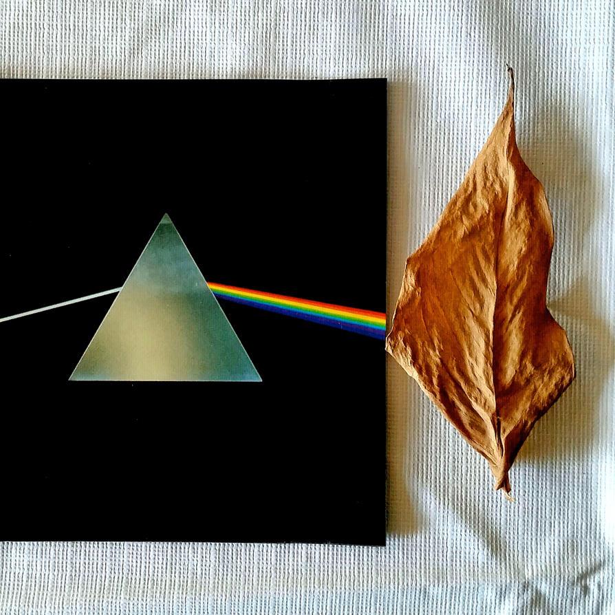 Floyd Leaf by MikeHenry