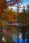 Fall colors in Upstate New York