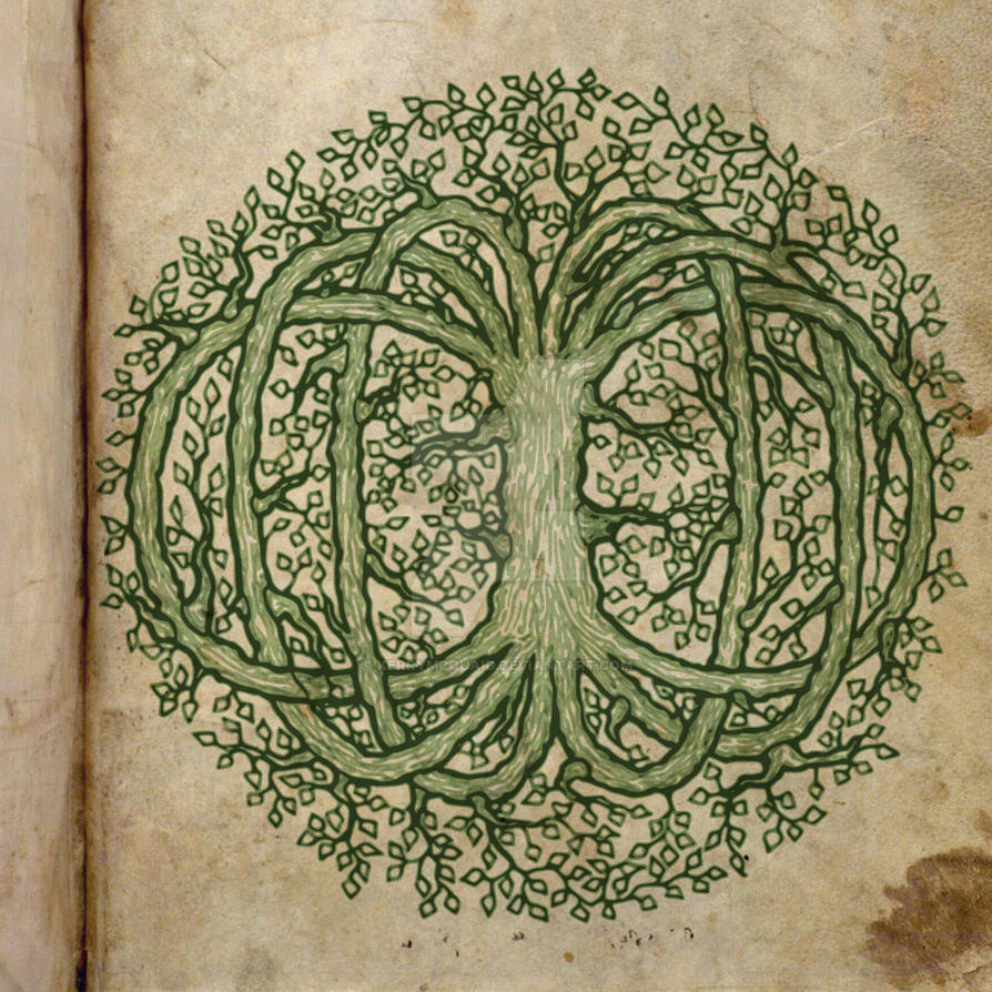 Celtic Tree Of Life By Kerrymcquaid