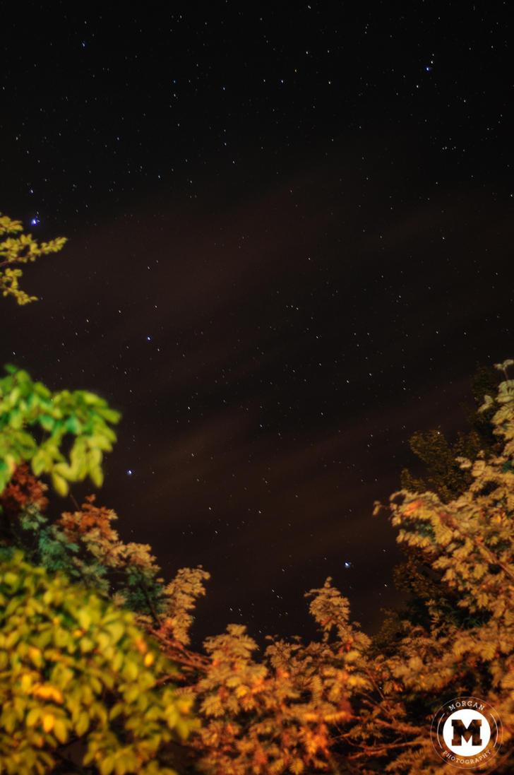 Stars by KiduVerde