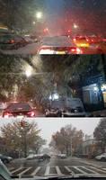 Blizzard by newyorkx3