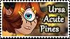 :Ursa Acute Pines: by WhisperSeas