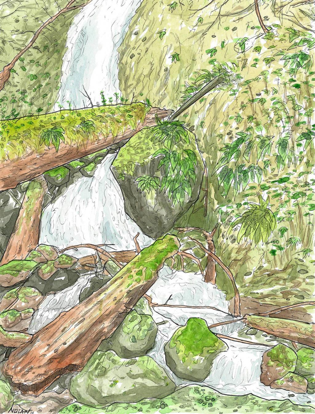 Quiet Quinault by Llewxam888