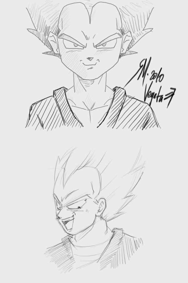 Vegeta by MJ-designer