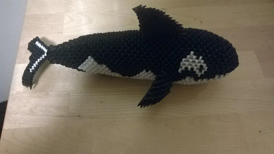 Killer Whale Origami 3D By Lacrya