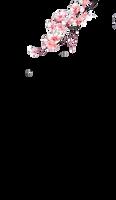 sakura by sulykwon2k3