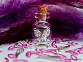 A bottle of wings by DianaVVolf