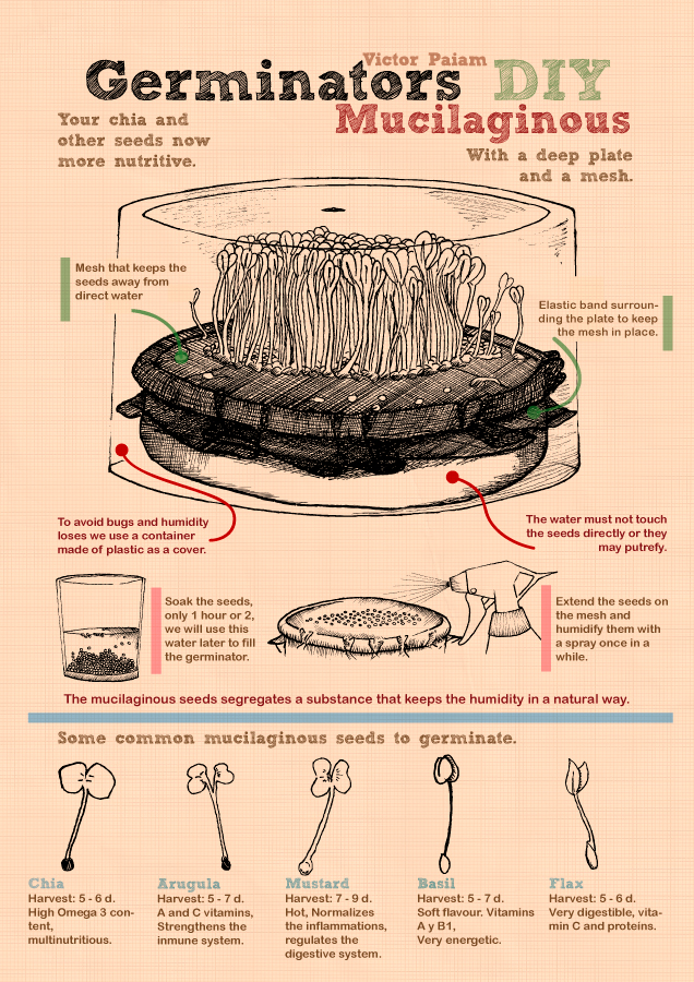 Infographics - Mucilaginous Germinator by VictorPaiam