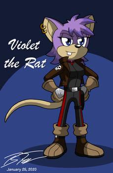Violet the Rat